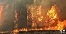 حالة طوارئ لإخماد النيران واستنجاد بالطيران القبرصي والايطالي